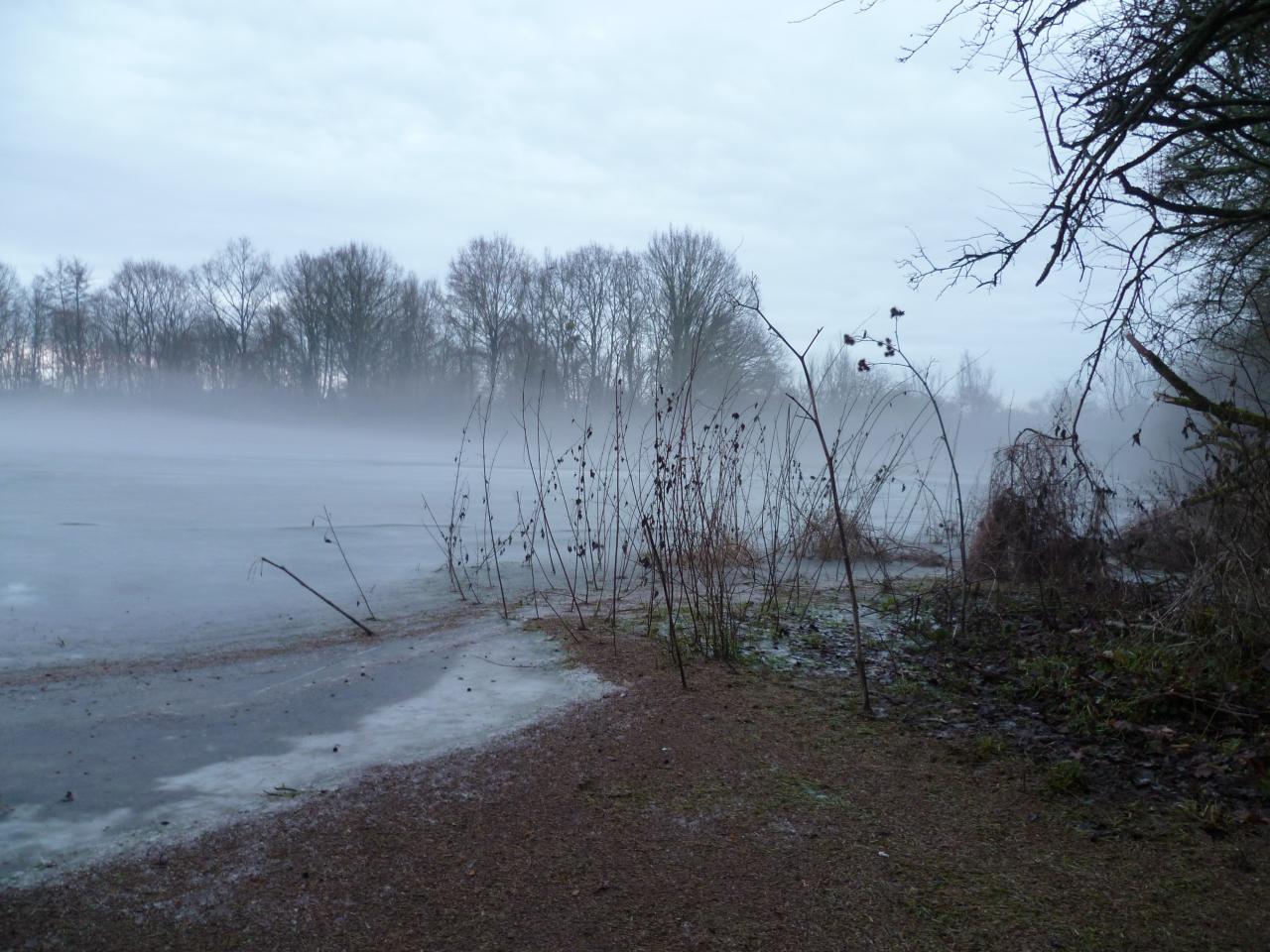 brume dans le val